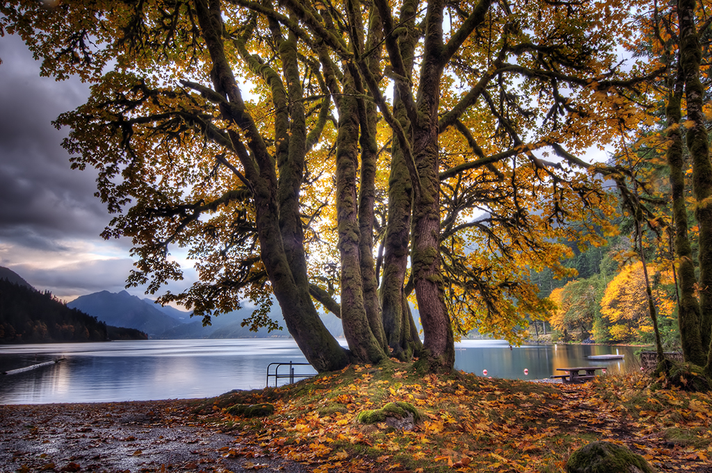 Lake Crescent Evening 01