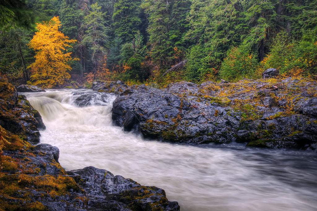 Sol Duc River 01